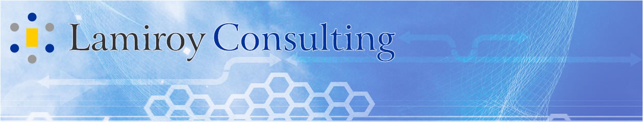 Lamiroy Consulting Blog