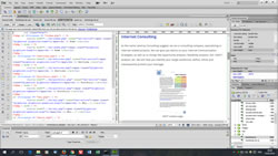 Screenshot programming environment